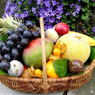 Allo Fruits